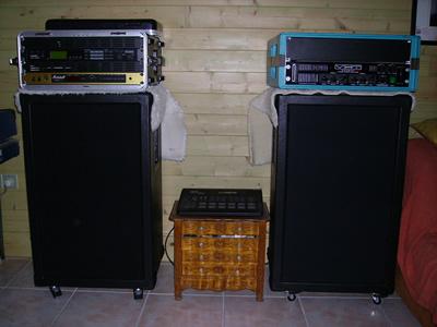 Construire une cabinet 1x12 ou 2x12 Bluesnake_cab_1_2_avant_tissus