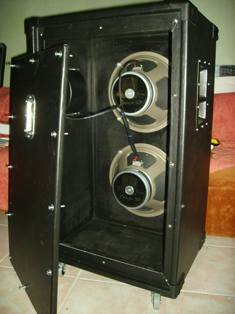 Construire une cabinet 1x12 ou 2x12 Bluesnake_cab_fini_2