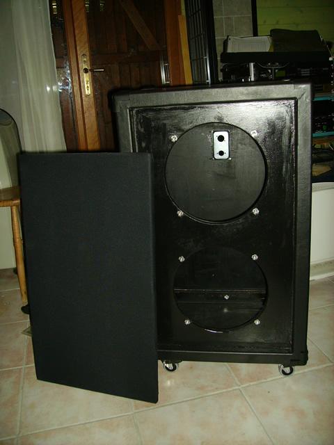 Construire une cabinet 1x12 ou 2x12 Bluesnake_cab_vide_1